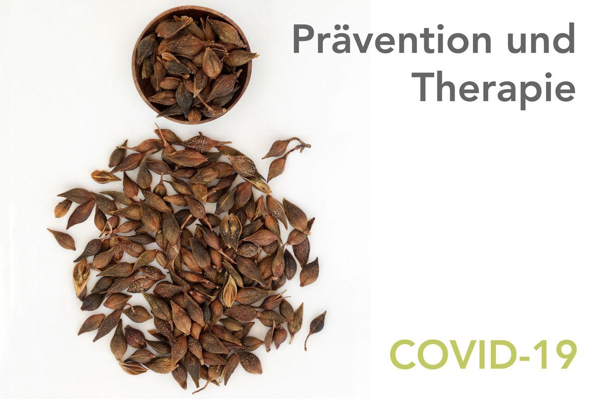 präventive Therapie Corona